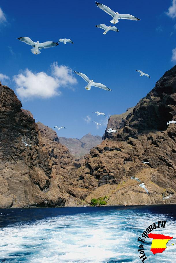 Погода в ноябре на острове Тенерифе