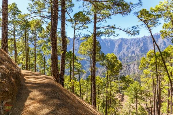 Caldera de Taburiente (La Palma, Spain)